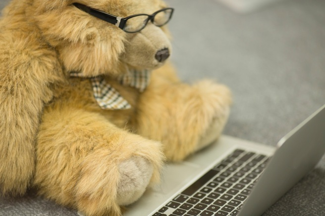 Bear with laptop