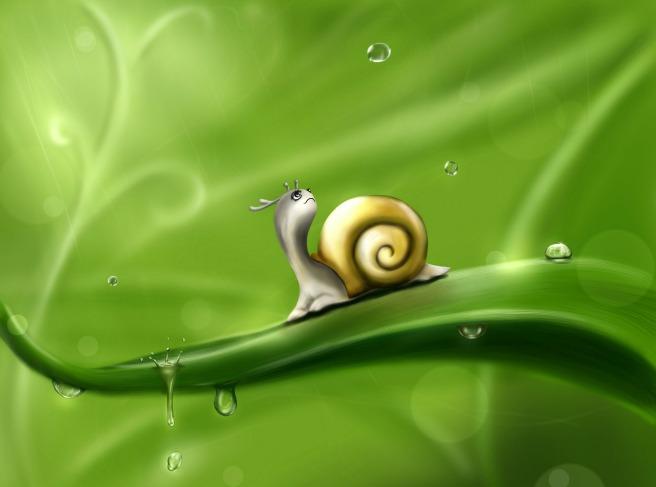 snail-83672_1280